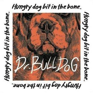 Hungry dog bit in the bone.